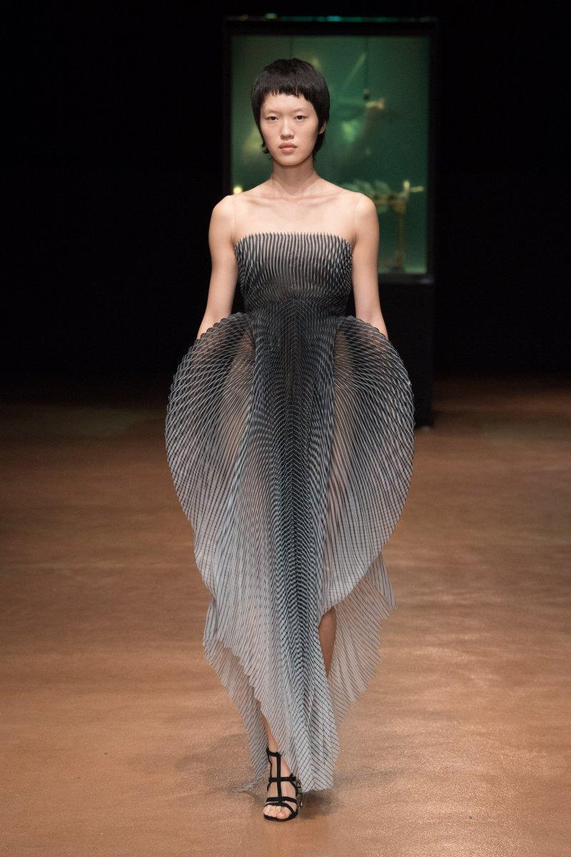 Дивовижний стиль Iris van Herpen