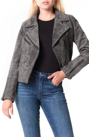 Vital Signs Suede Moto Jacket
